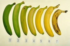 Bananas - a perishable commodity
